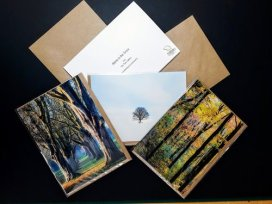 Mark Greetings Cards